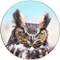 Great Horned Owl Sandstone Ceramic Coaster | Front