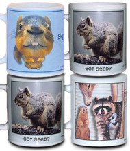 Funny Squirrel Mugs - Set of 4
