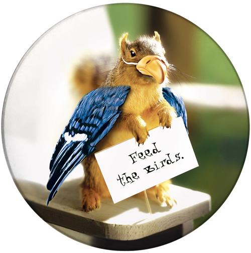 Feed the Birds SandstoneCeramic Coaster | Front