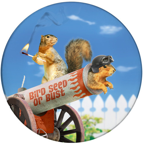 Bird Seed of Bust Sandstone Ceramic Coaster | Cannon Squirrel | Front