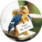 Feed the Birds Sandstone Ceramic Coaster | 4pack | Funny Squirrel | Front