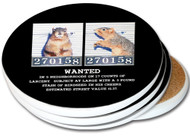 Mugshot Squirrel Sandstone Ceramic Coasters | 4pack
