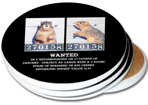 Mugshot Squirrel Sandstone Ceramic Coasters | 4pack