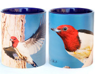 Woodpecker in Flight Mug | Jim Rathert Photography