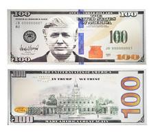 President Donald Trump $100 US Magnet