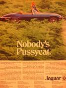 1974 Porsche 911, 914 Jaguar XKE,,Datsun Honda ads