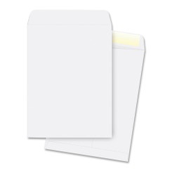 Envelopes 10x13 10pk White