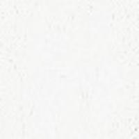 Gamblin Artist Oils 37ml Sr 1 Flake White Replacement