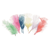 Darice Feather Packs Pastel