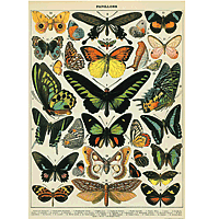 "Cavallini Decorative Paper 20x28"" sheet Butterflies (large)"