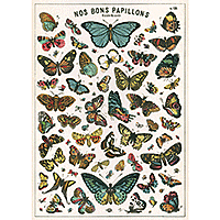 "Cavallini Decorative Paper 20x28"" sheet Butterfly Chart"