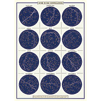 "Cavallini Decorative Paper 20x28"" sheet Constellations"