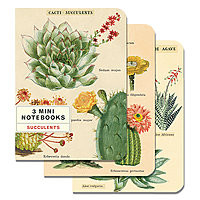 Cavillini Mini Notebooks 3pk Succulents