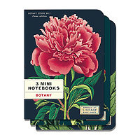 Cavillini Mini Notebooks 3pk Botany