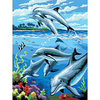 Paint by Numbers Kit Small Set Dolphins
