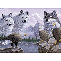 Paint by Numbers Kit Large Set Wolves & Eagles
