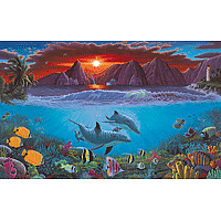 Paint by Numbers Kit Large Set Ocean Life