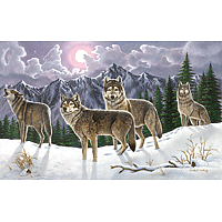 Paint by Numbers Kit Large Set Wolves