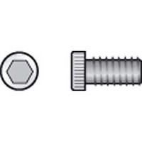 Raleigh M5 x 12mm  bottle cage bolts (5586)