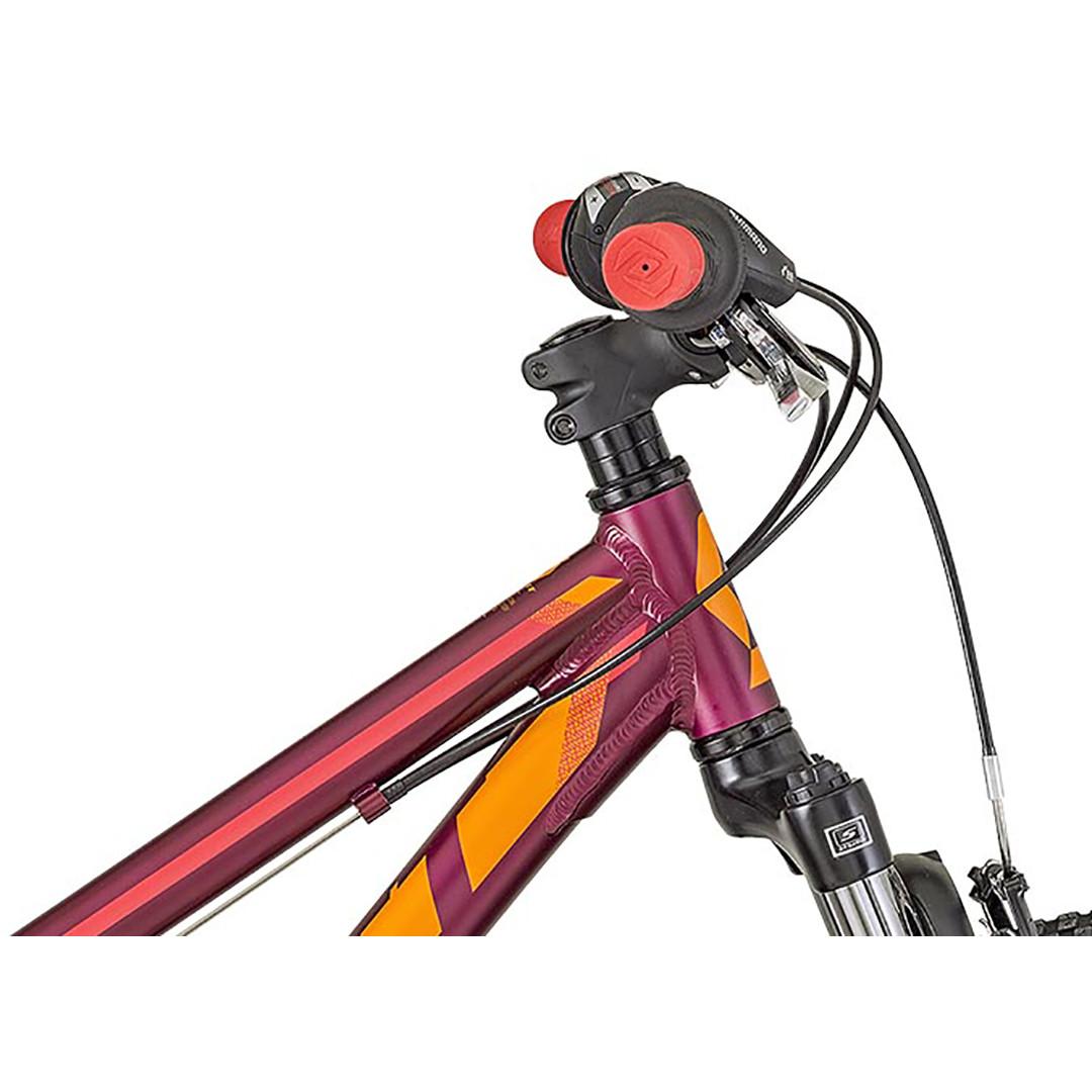 """Scott Contessa Jr 24"""" Bike"""