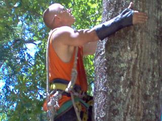 arm-chaps-tree-service-3.jpg