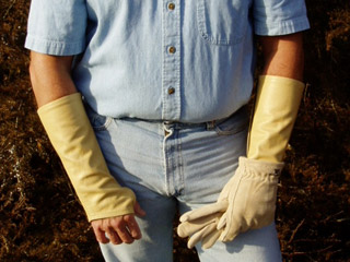 arm-chaps-tree-service-tan.jpg