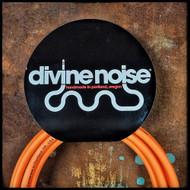 Divine Noise 10' ST-ST Instrument Cable (Orange)