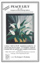 Peace Lily Front Cover