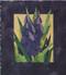 Grape Hyacinths Paper Piecing Pattern Quilt Block