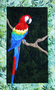 Parrot Picture Paper Piecing Quilt