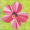 Hibiscus Flower Block