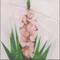Gladiola Flower Block