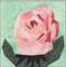 Rose Flower Block