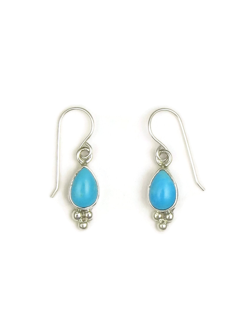 51be3e1dc Sleeping Beauty Turquoise Earrings by Shirley Henry (ER3412) - Southwest  Silver Gallery