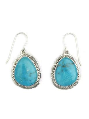 Kingman Turquoise Earrings by Jake Sampson (ER3347)