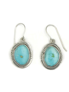 Kingman Turquoise Earrings by Jake Sampson (ER3448)