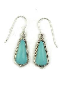 Turquoise Mountain Earrings by Berna Francisco (ER5092)