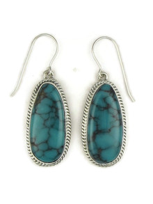 Webbed Turquoise Mountain Earrings by Lyle Piaso (ER3996)