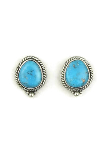 Sleeping Beauty Turquoise Post Earrings by Lucy Valencia (ER4026)