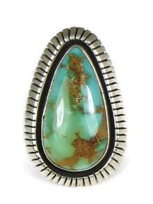 Royston Turquoise Ring Size 7 by Willie Cooper (RG4993)