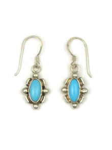 Sleeping Beauty Turquoise Earrings (ER4195)