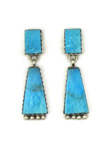 Kingman Turquoise Earrings (ER5120)