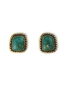14k Gold Emerald Valley Turquoise Post Earrings (ER5259)