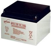 Enersys Genesis NP24-12B Battery - 12 Volt 24.0 Amp Hour