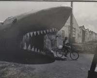 "Mayito (Mario García Joya) #139. ""Caibarien,"" 1983. from the photo essay ""Caibaren"" (the ""shark"" is a night club)"