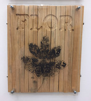 "William Pérez, series Flor, ND. Wood and plexiglass. 12.5"" x 10.5"""
