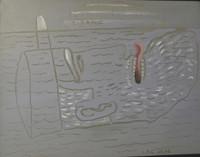 """Carlos Cárdenas #BN  """"Titanic,"""" 2008. Acrylic on canvas. 15.5 x 19.5 inches"""