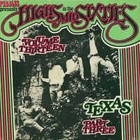 HIGHS IN THE MID 60's - Vol 13: TEXAS 3   ( Texas garage rarities ) Comp LP