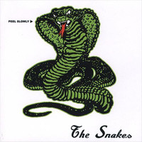 SNAKES  (L.A  band 60'S PSYCH STYLE BRIAN JONESTOWN MASSACRE) LAST ONE!