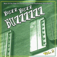 BUZZ BUZZ BUZZ-Vol 2- More of the high art of.... (60s Psych)COMP  CD